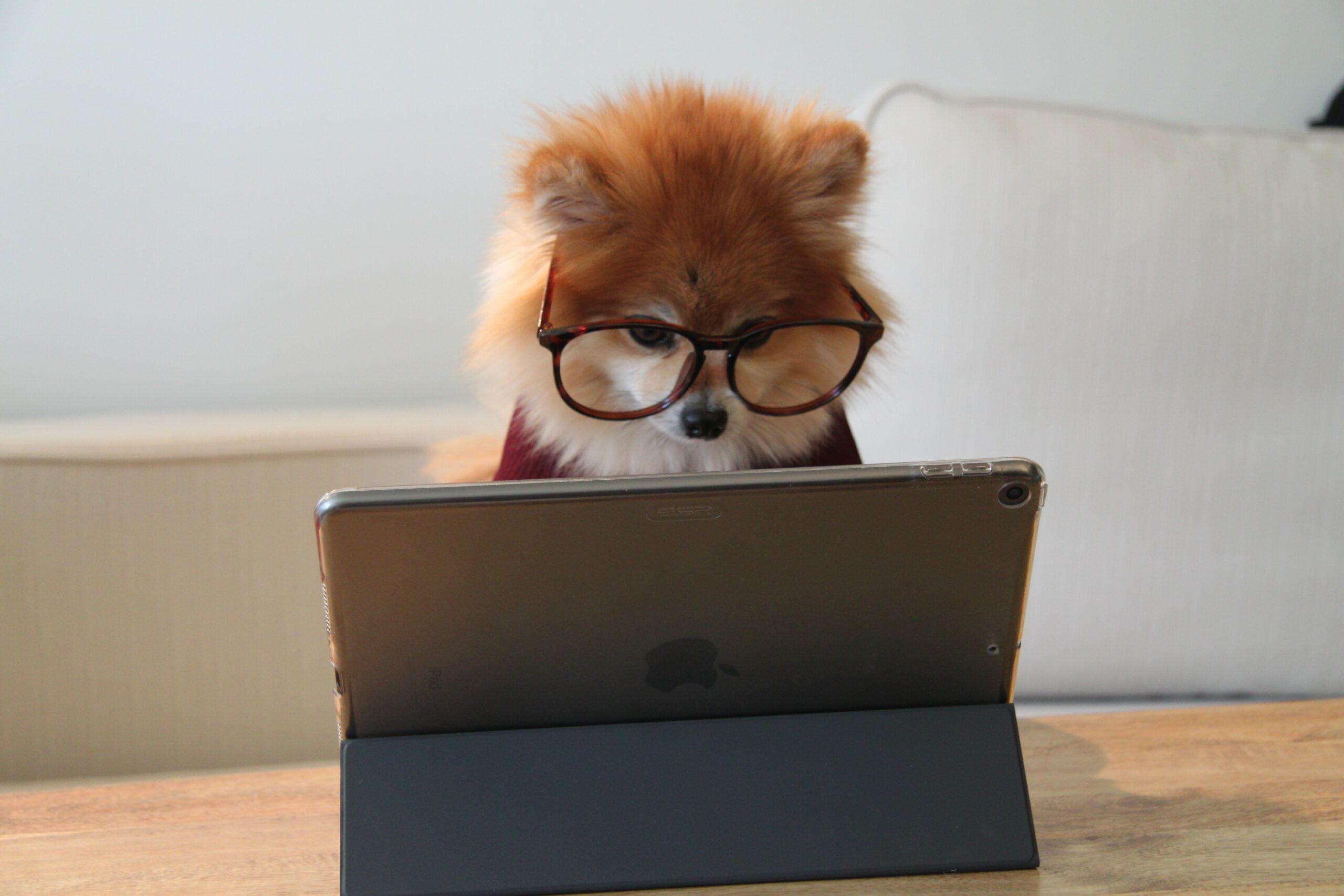 Outsourcing IT czy jest i kiedy jest potrzebny obsługa informatyczna dla małych firm? post thumbnail image